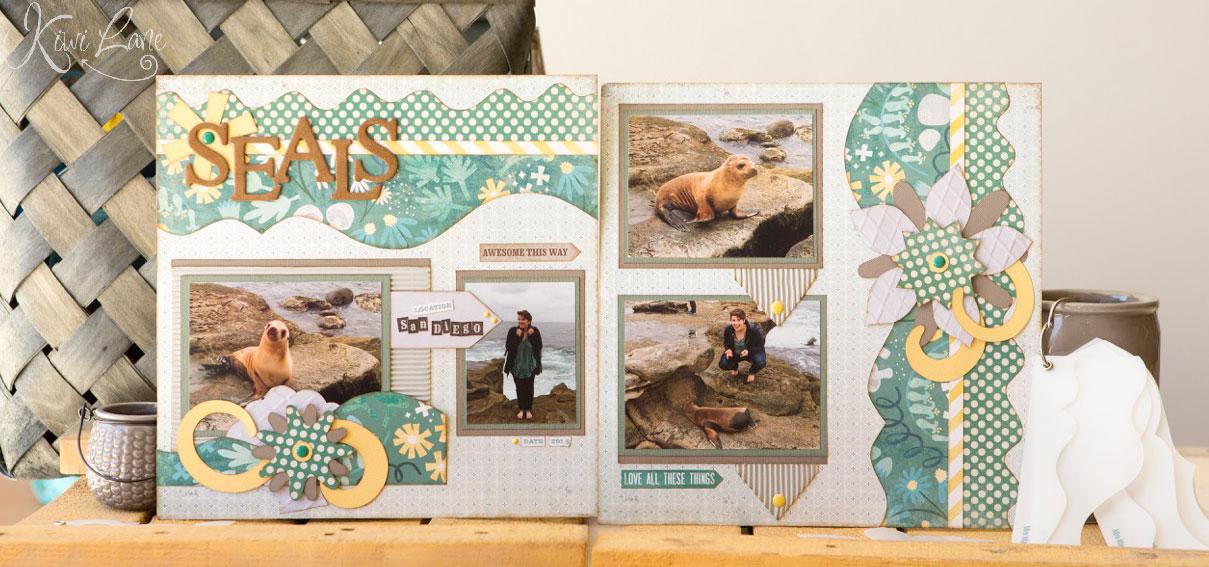 Seals/Beach Layout