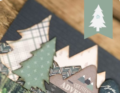 pine shop image