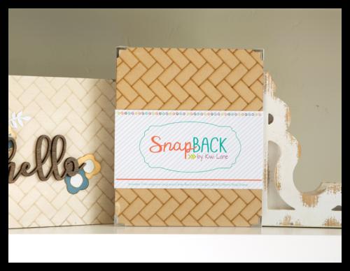 Herringbone Snap Back Snap Frame Shop Image