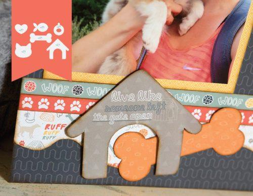 Pets Accessory Shop Image