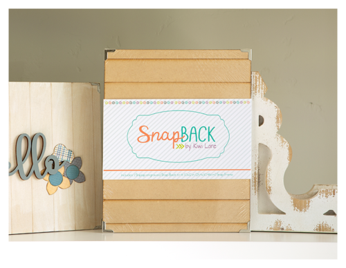 shiplap snap back shop image